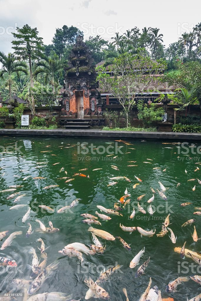 Holiday in Bali - Tirta Empul Holy Water stock photo