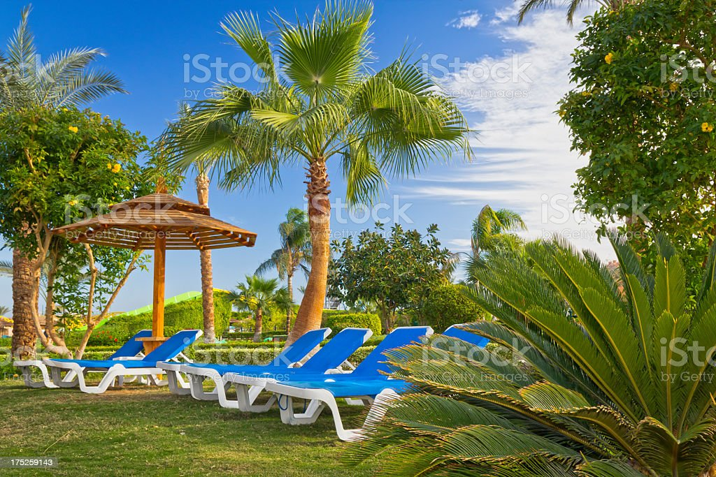 Holiday in tropics royalty-free stock photo