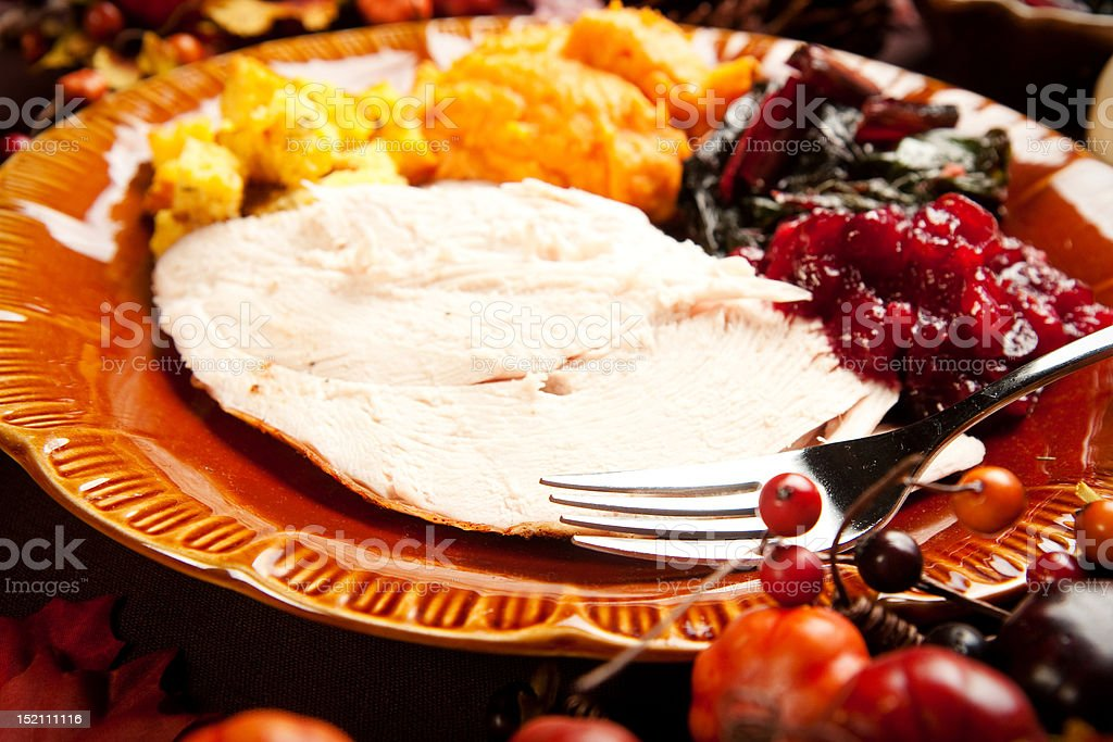 Holiday Meal royalty-free stock photo
