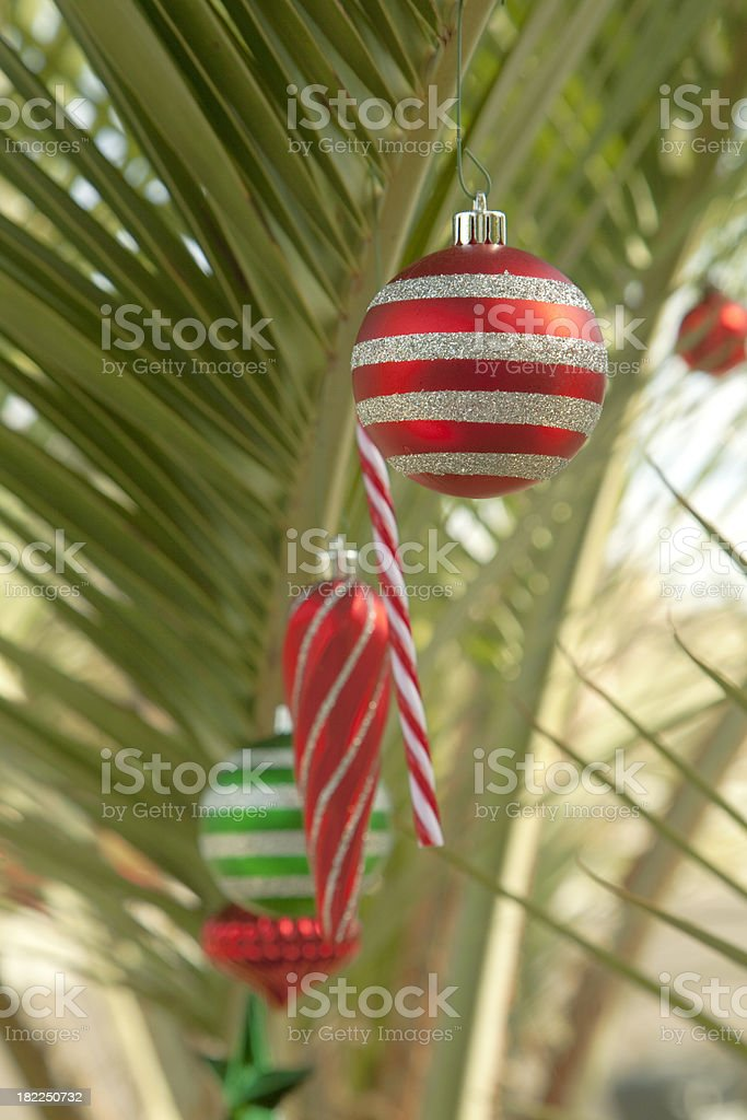 \'A tropical Holiday theme, with ornaments arranged on a palm frond....