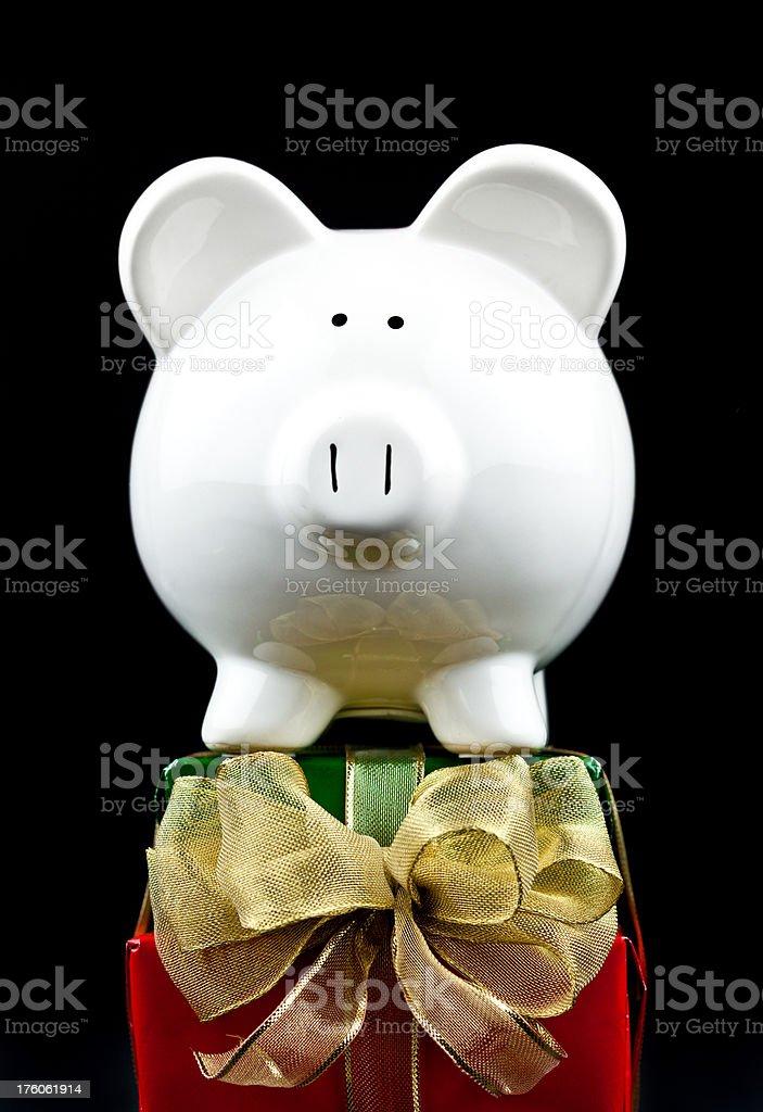 Holiday Piggy stock photo