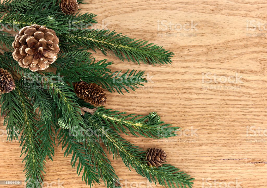 Holiday pine background royalty-free stock photo