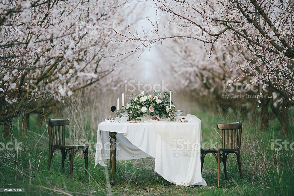 Holiday table in the blossoming garden stock photo