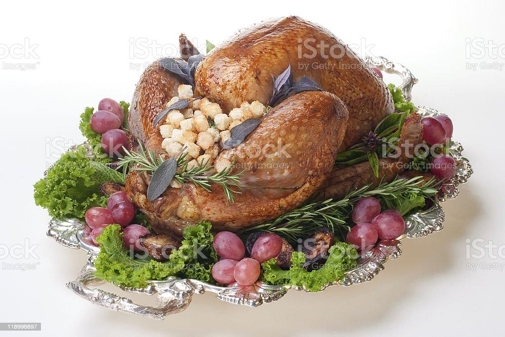 Holiday turkey on white stock photo