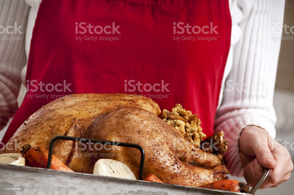 Holiday Turkey royalty-free stock photo