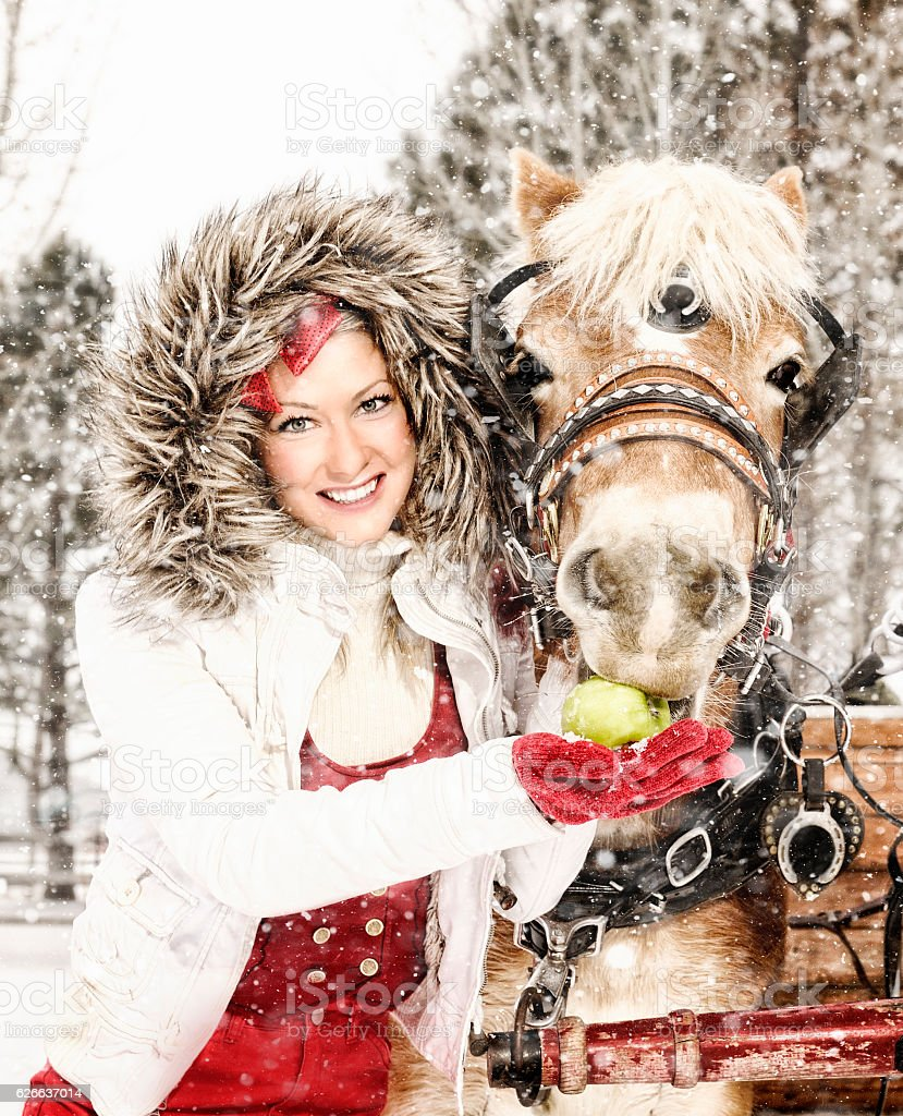 Holiday Wishes For Everyone - Woman Feeding Horse An Apple stock photo