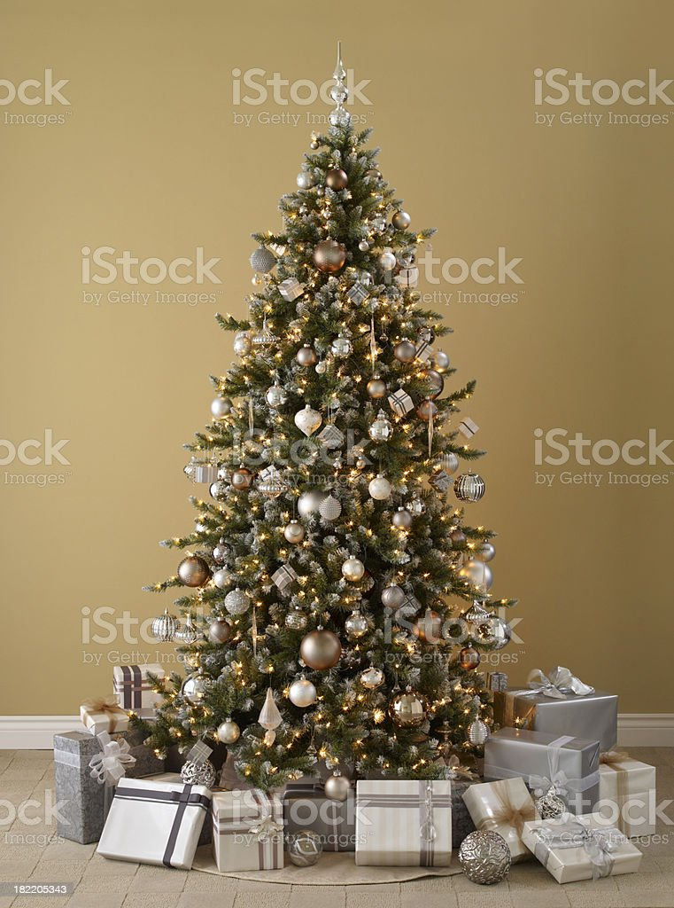 Holiday-Christmas Tree B stock photo