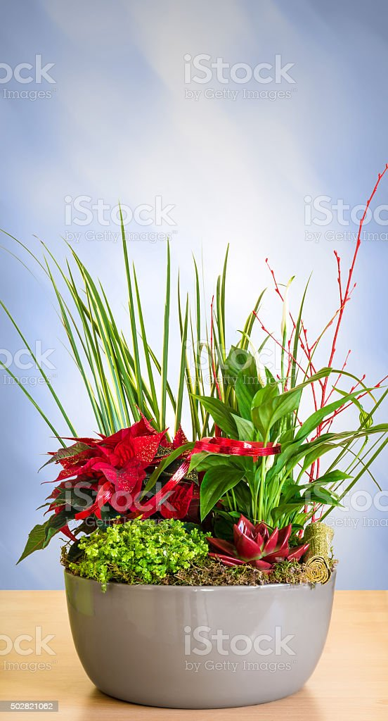 Holidays celebration floral composition on table letterbox format abstract background stock photo