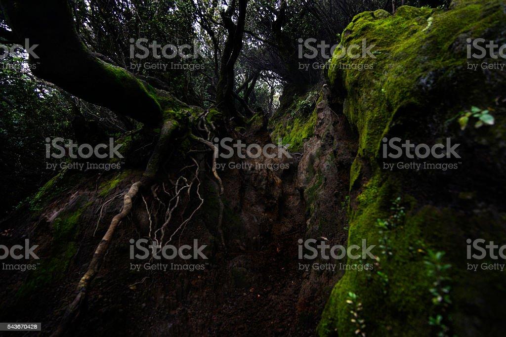 hollow stock photo