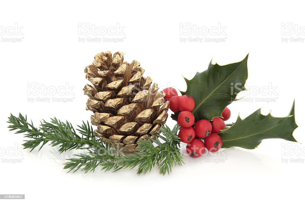 Holly and Pine Cone Decoration stock photo