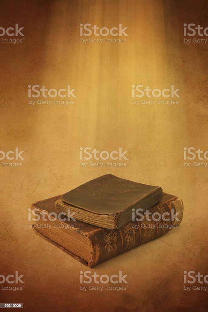 Holly Books royalty-free stock photo