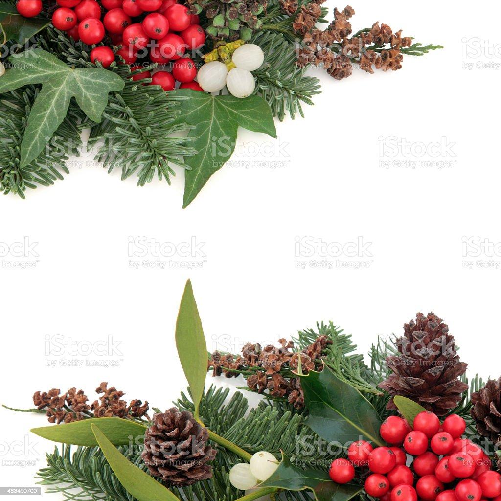 Holly Ivy and Mistletoe Border stock photo