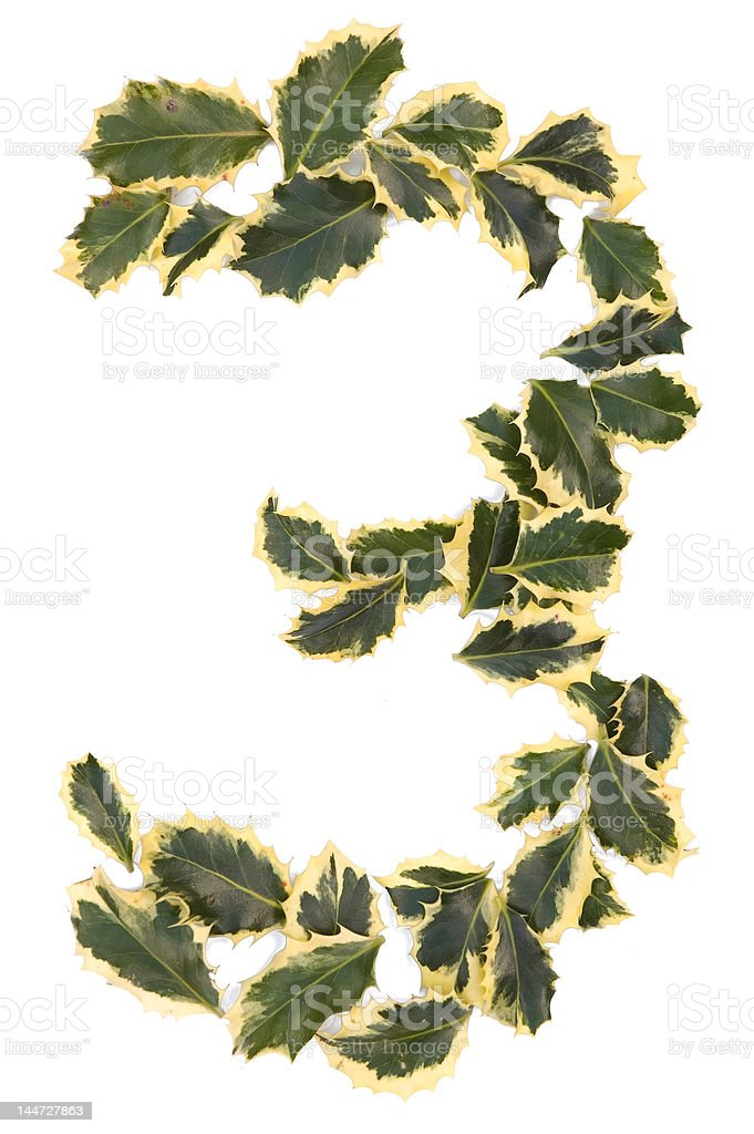 Holly Number Three royalty-free stock photo