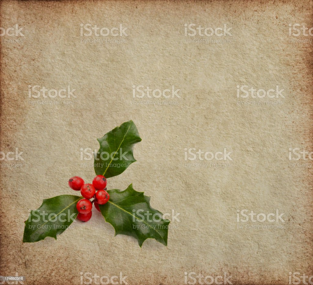 Holly on Texture royalty-free stock photo
