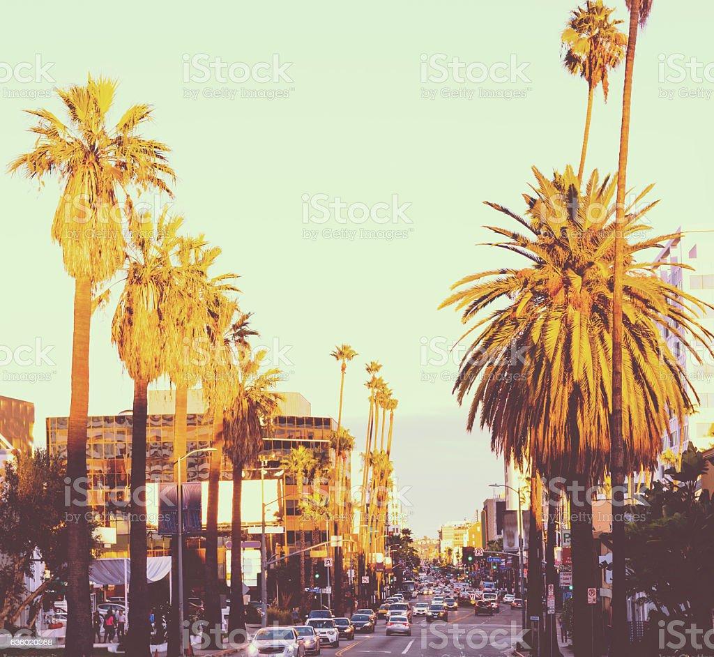 Hollywood boulevard at sunset stock photo