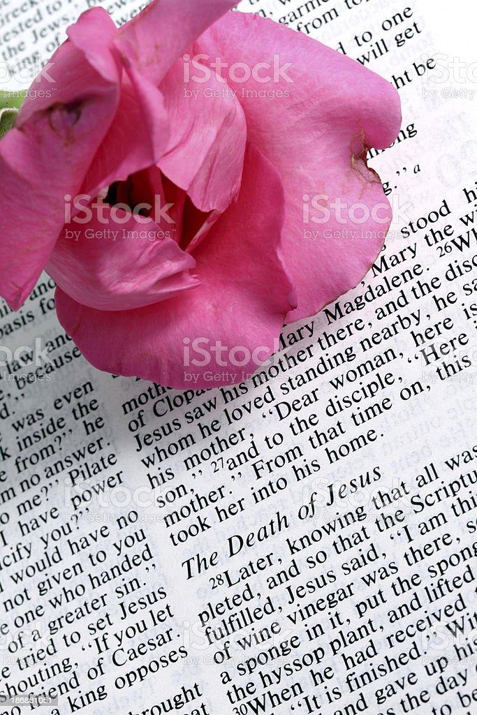 Holy Bible text royalty-free stock photo