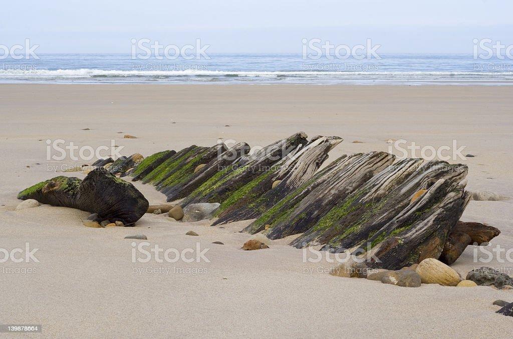 Holy Island Shipwreck 3 stock photo