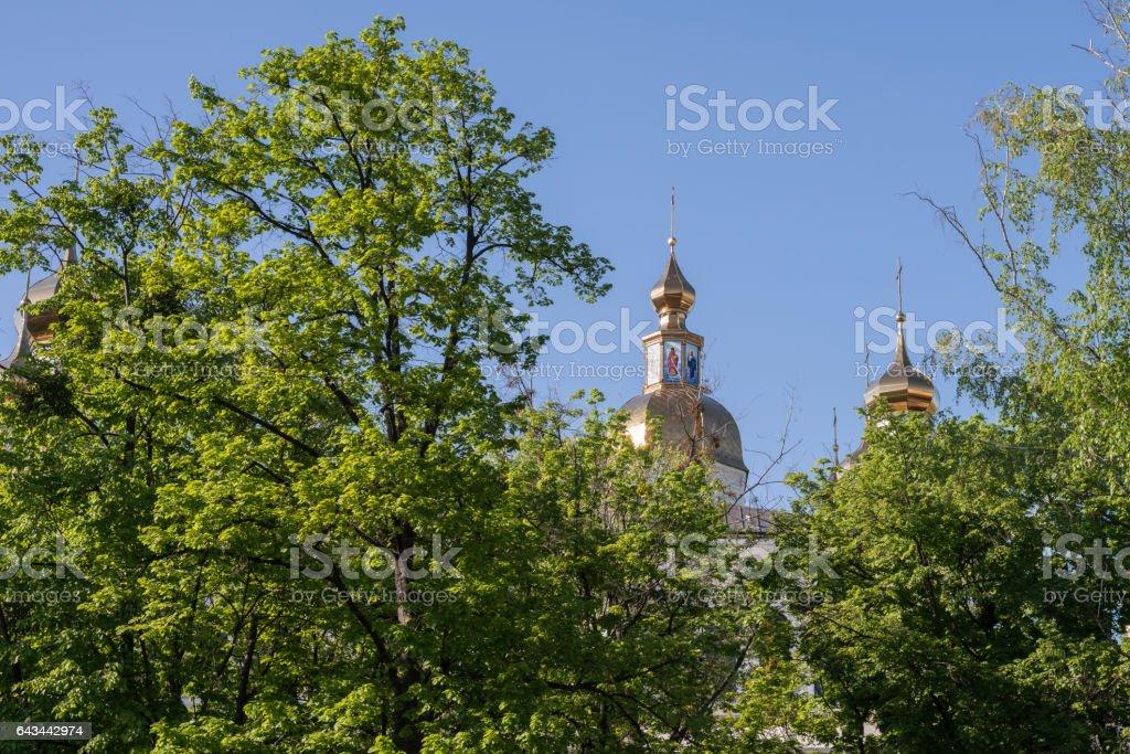 Holy Virgin Monastery Domes stock photo