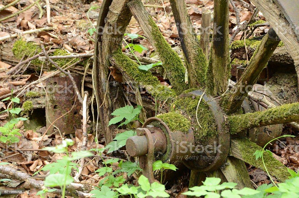 Holzrad stock photo