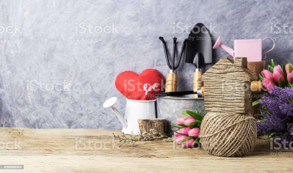 Home and garden concept of gardening tools and flowers stock photo