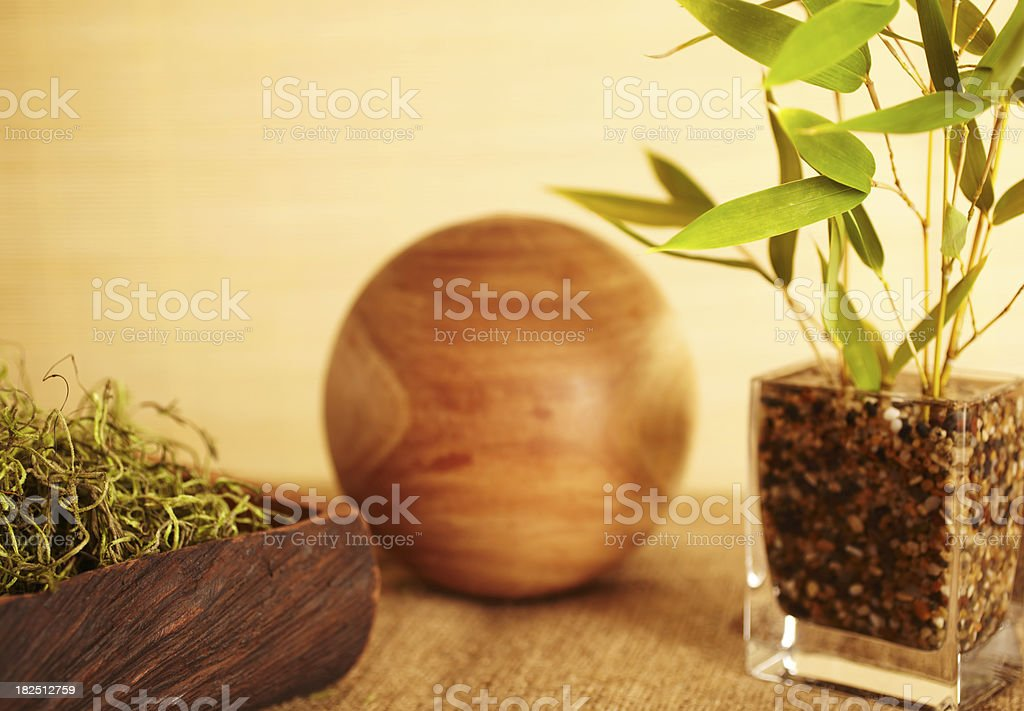 Home decor still life of bamboo in vase royalty-free stock photo