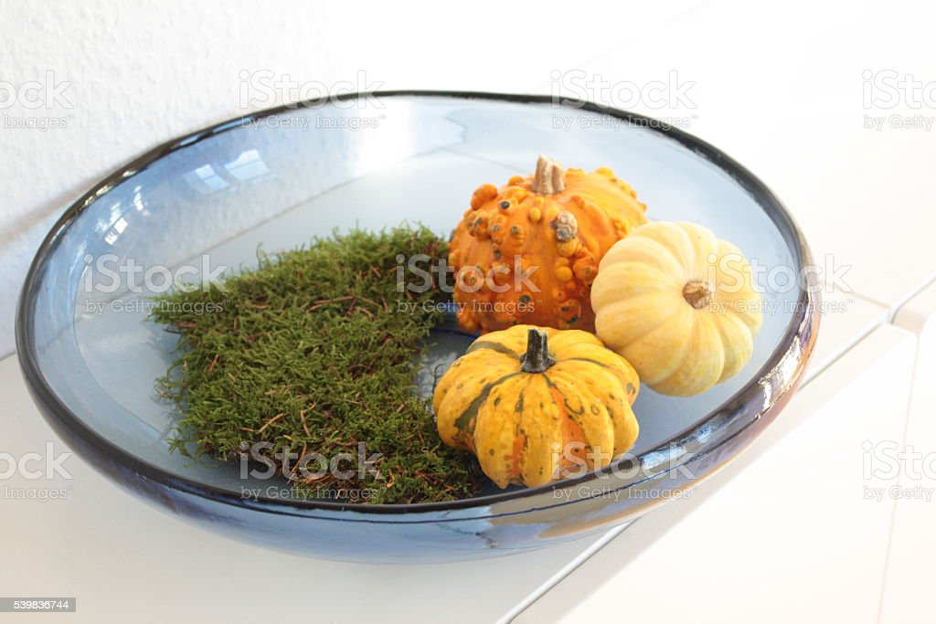 home decoration arrangement with pumpkins and moss stock photo