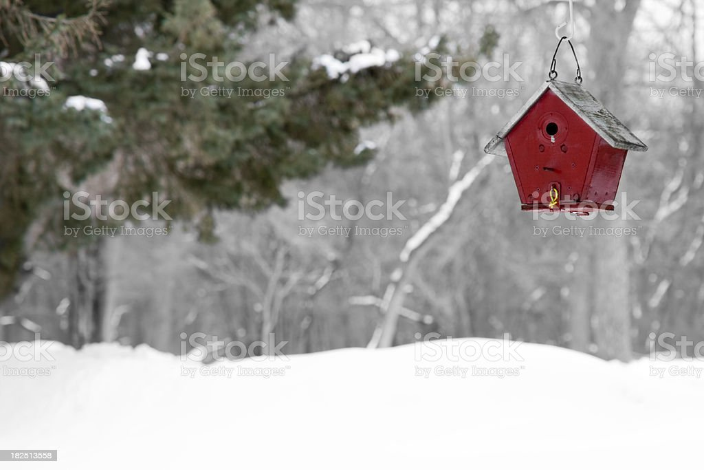 Home for the Winter royalty-free stock photo