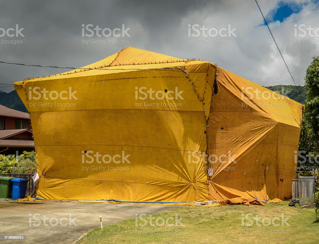 Home Fumigation Pest Control Tent stock photo