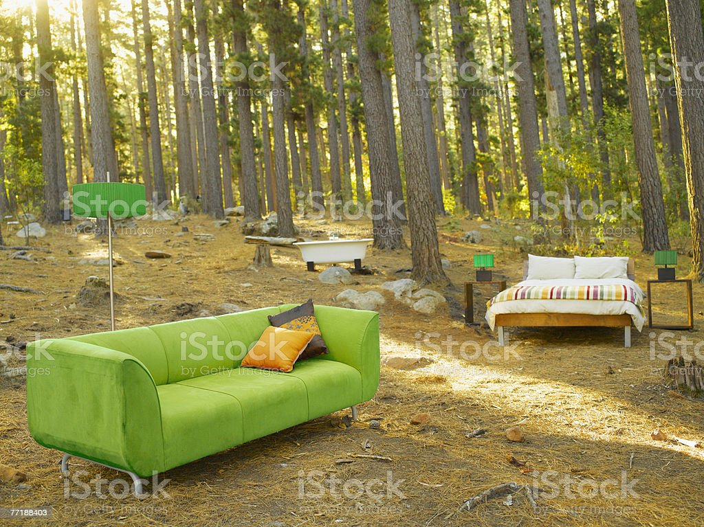 Home furnishings in the middle of the woods royalty-free stock photo