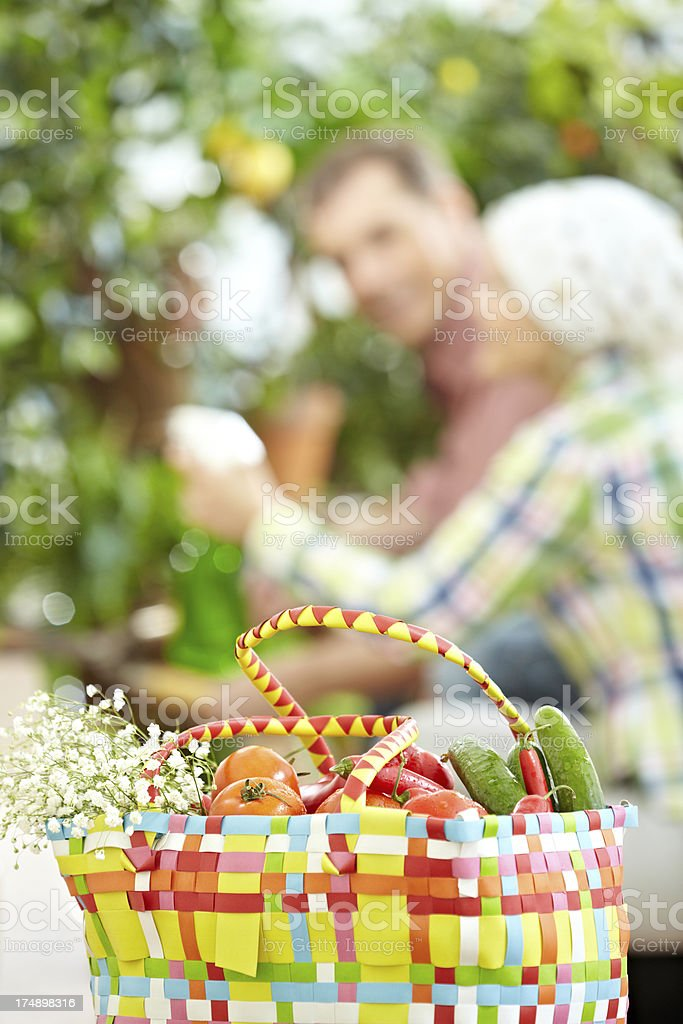 Home garden royalty-free stock photo