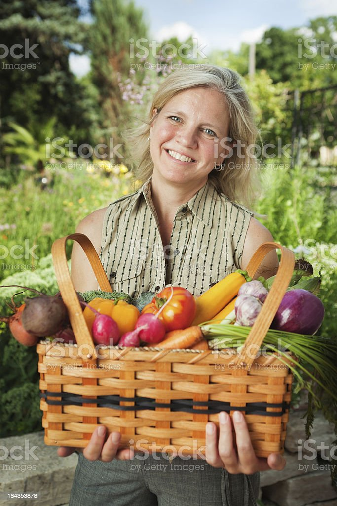 Home Gardener Harvesting Summer Garden Vegetables and Produce royalty-free stock photo