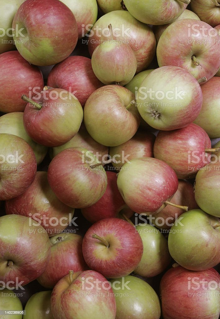 Home grown apples stock photo
