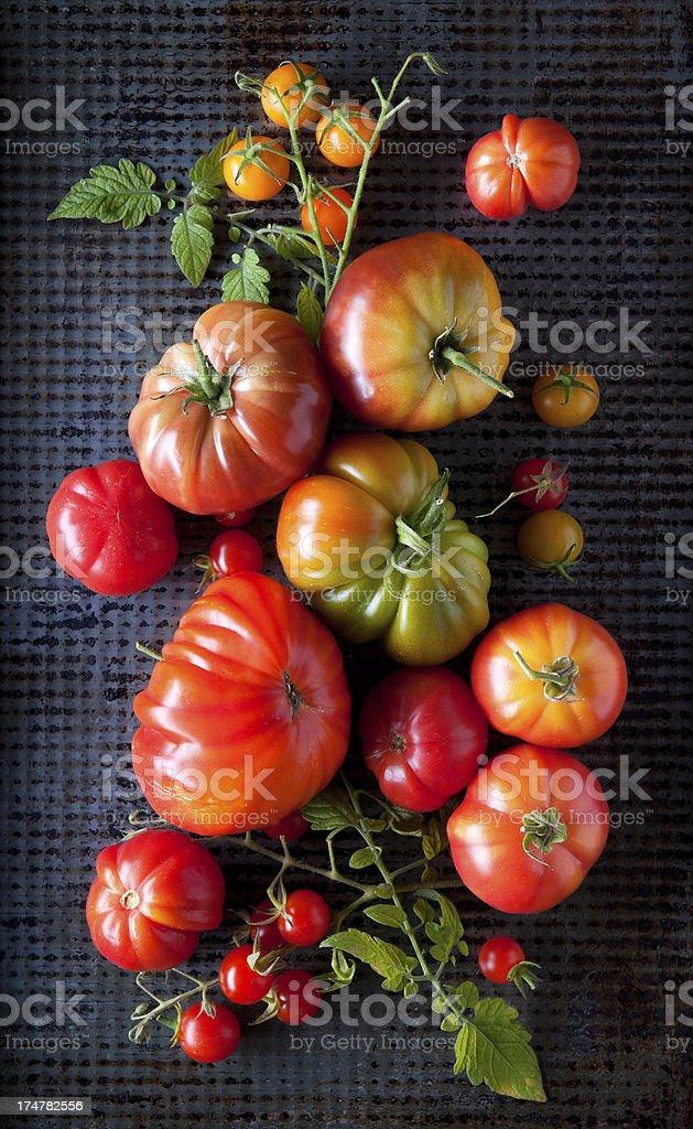 Home Grown Heirloom Tomatoes stock photo