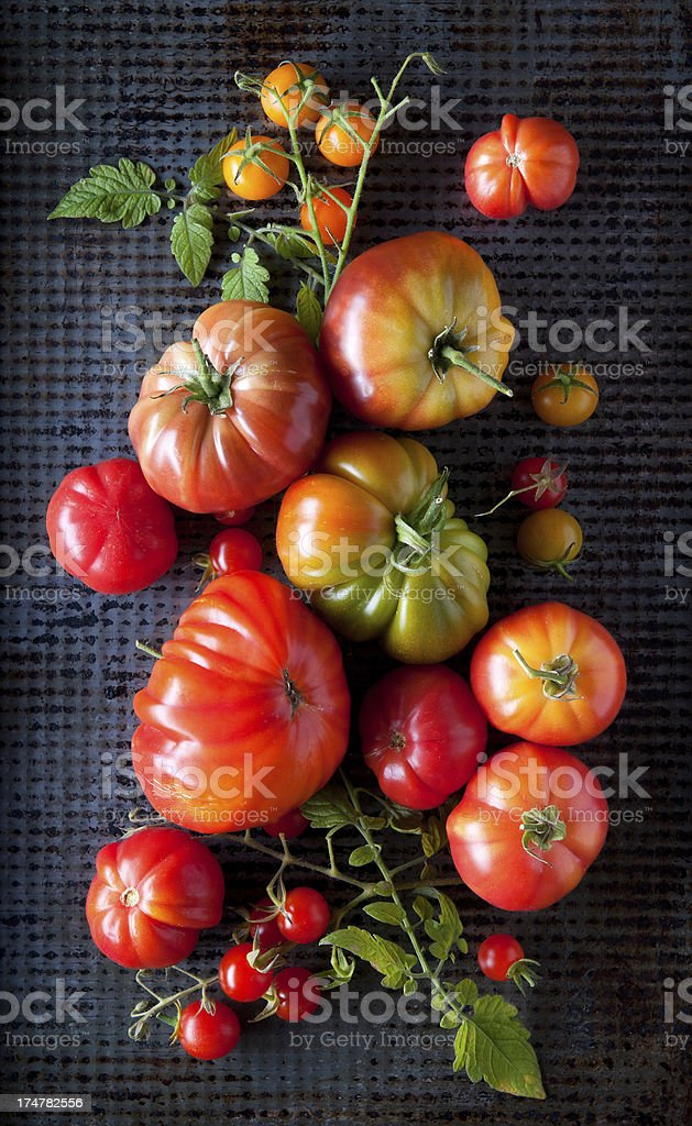 Home Grown Heirloom Tomatoes stock photo