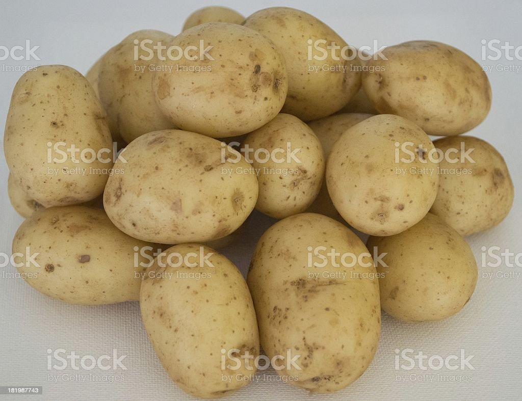 Home grown new potatoes royalty-free stock photo