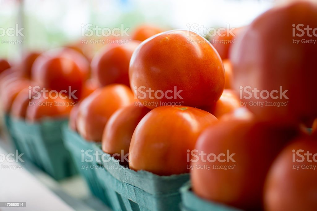 Home Grown Tomatoes stock photo
