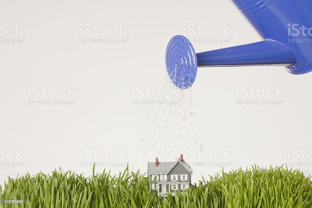 Home Growth royalty-free stock photo