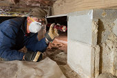 Home inspector looks for termites in residential home's crawl space