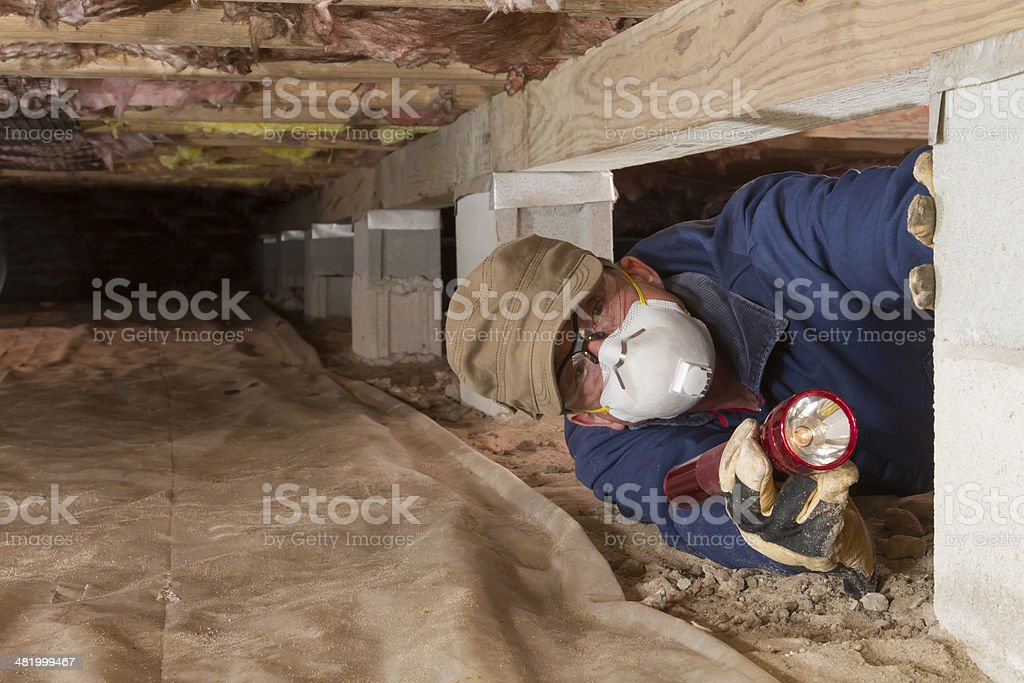 Home inspector looks for termites in residential home's crawl space. stock photo
