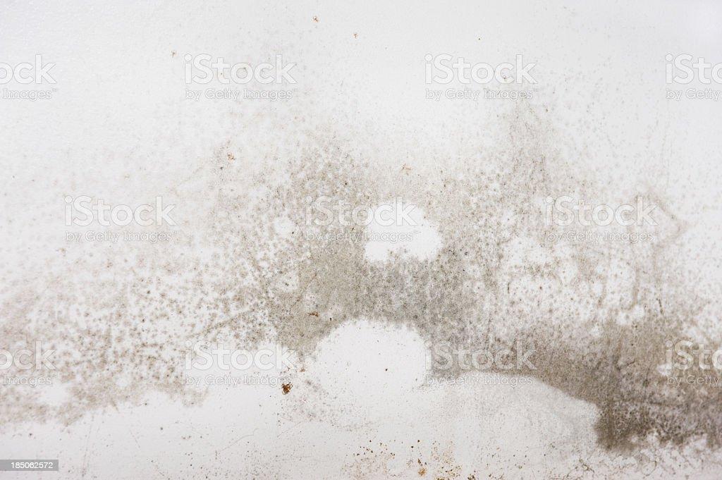 Home interior Mold stock photo