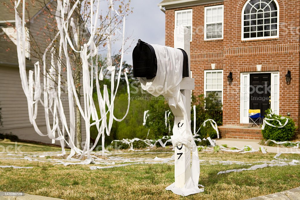 Home is pranked with toilet papering stock photo