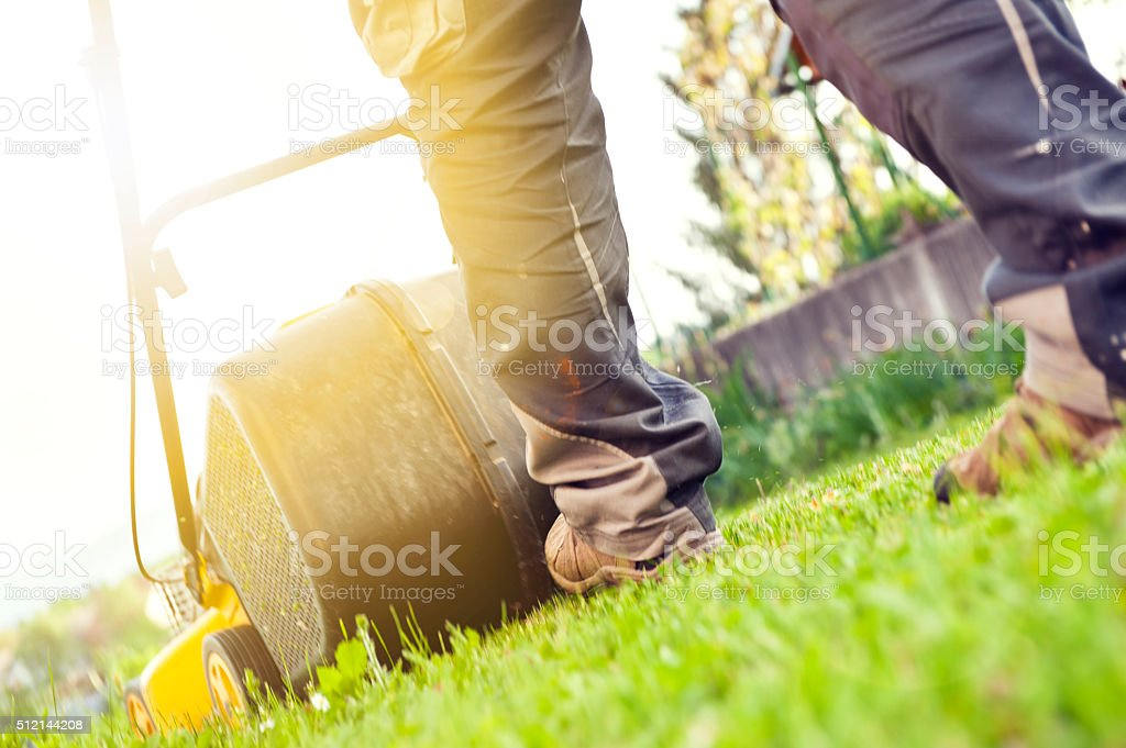 Home Lawn Mower stock photo