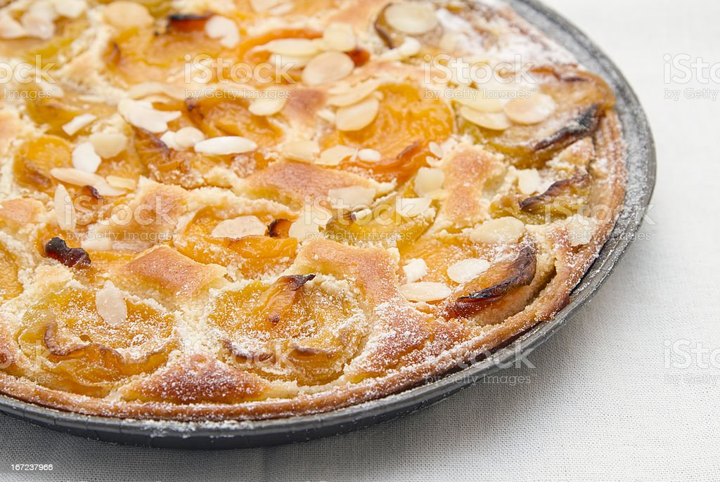 Home made apricot fruit pie royalty-free stock photo