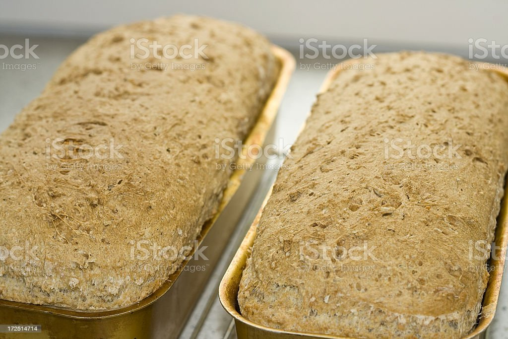 Home made bread royalty-free stock photo