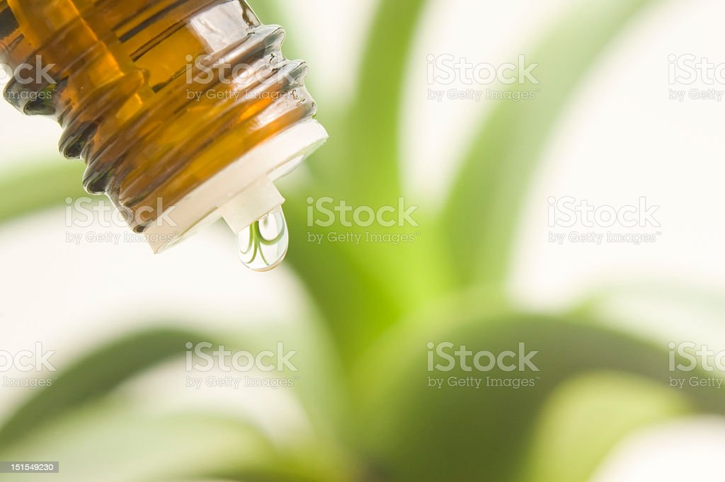 Home remedies or herbal alternatives to medication royalty-free stock photo