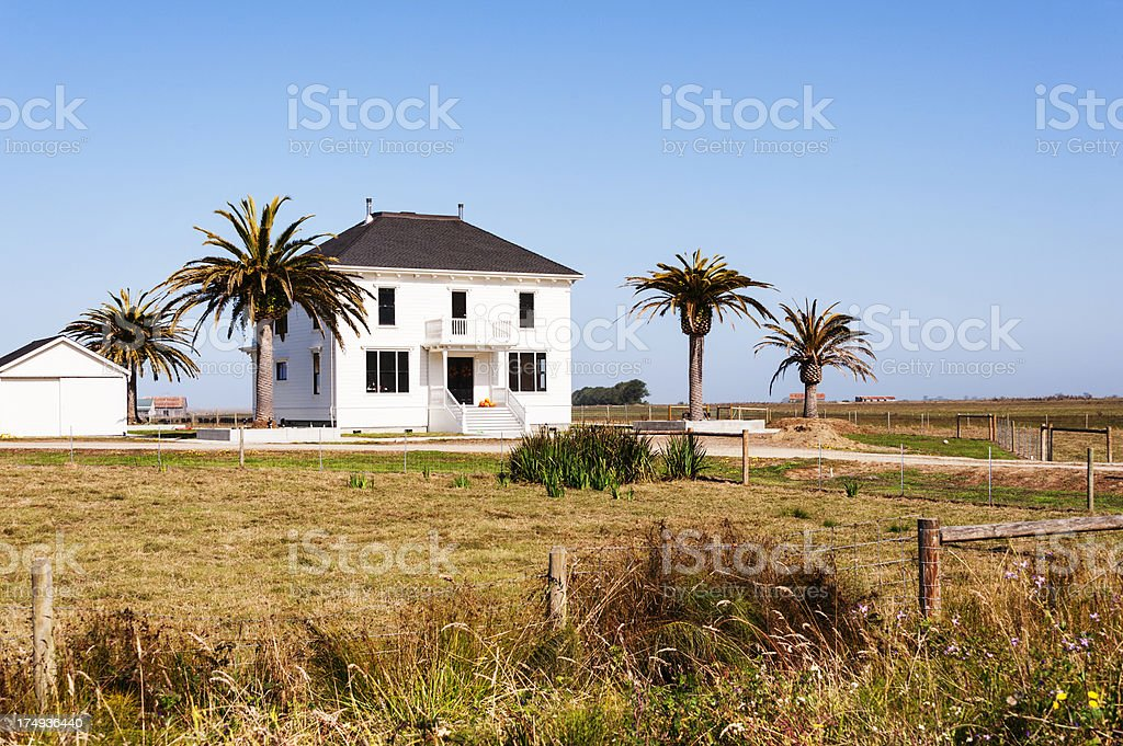 Home with Palm trees royalty-free stock photo