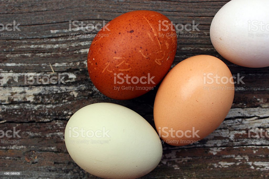 Homegrown Eggs of Various Shades stock photo