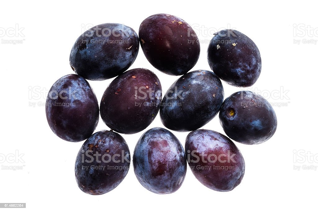 Homegrown organic pile of blue plums isolated on white backgroun stock photo