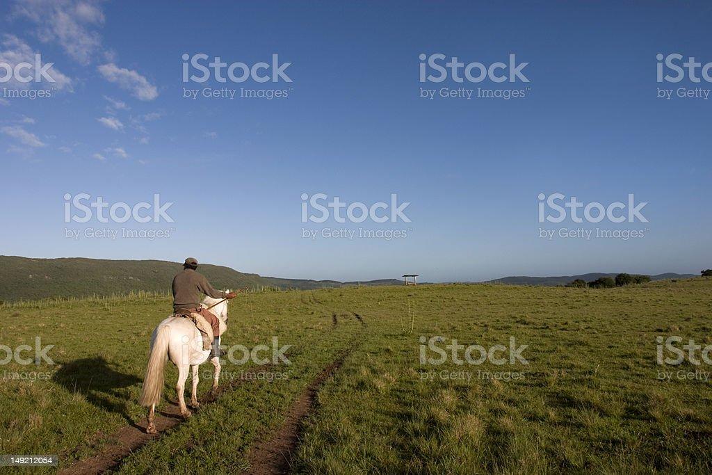 Homem a cavalo stock photo