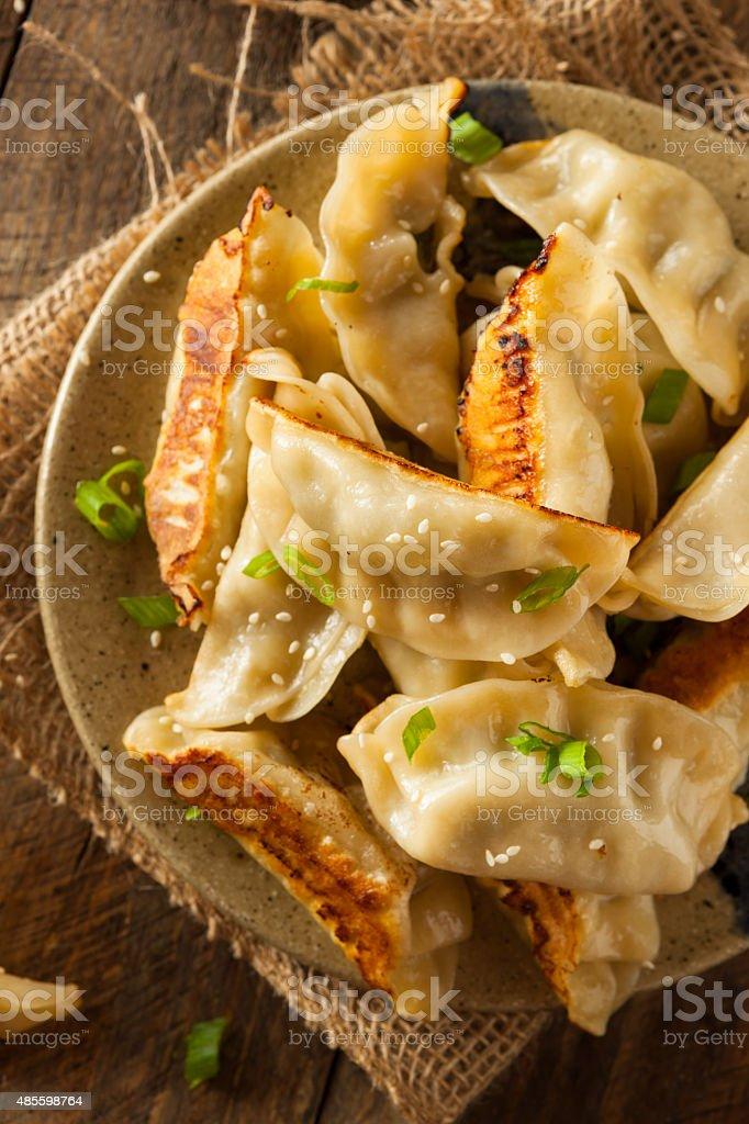 Homemade Asian Pork Potstickers stock photo